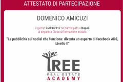 Domenico Amicuzi - Tree Real Estate Accademy